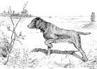 Målarbild jakthund