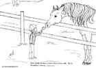 Målarbild Jordan-häst