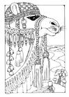 Målarbild kamel