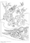 Målarbild Kameleont