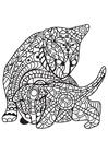 Målarbild katt med kattunge