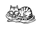 Målarbild katt