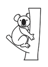 Målarbild koalabjörn
