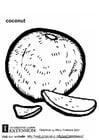 Målarbild Kokosnöt