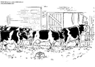 Målarbild kor
