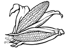 Målarbild majs