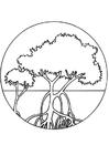 Målarbild mangrovekärr