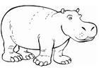 Målarbild noshörning