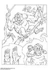 Målarbild orangutang