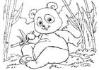 Målarbild panda