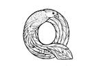 Målarbild q-quetzal