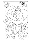 Målarbild ros med bi och fjäril