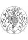 Målarbild sjöhästmandala