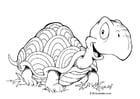 Målarbild sköldpadda