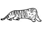 Målarbild sovande tiger