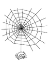 Målarbild spindelnät med spindel