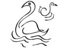 Målarbild svanar
