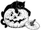 Målarbild svart katt pÃ¥ pumpa