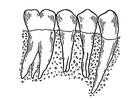 Målarbild tänder