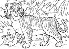 Målarbild tiger