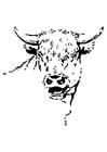 Målarbild tjur