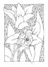 Målarbild tulipaner