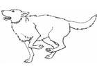 Målarbild varg